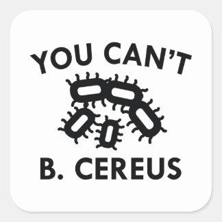 You Can't B. Cereus Square Sticker
