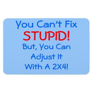You Can't Fix STUPID!, but you can... MAGNET