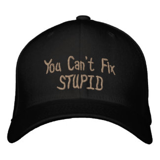 You Can't Fix Stupid Embroidered Hat