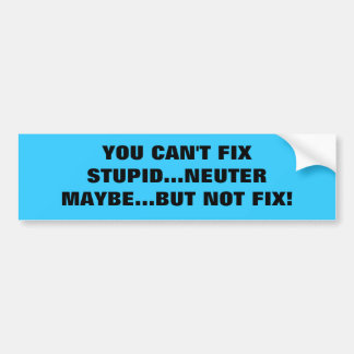 YOU CAN'T FIX STUPID...NEUTER MAYBE...BUT NOT FIX! CAR BUMPER STICKER