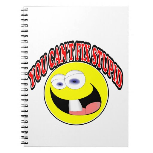 You Can't Fix Stupid Notebooks