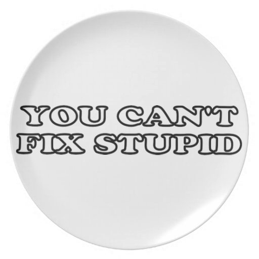 You Can't Fix Stupid Party Plate