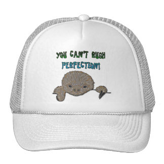 You Can't Rush Perfection Baby Sloth Cap