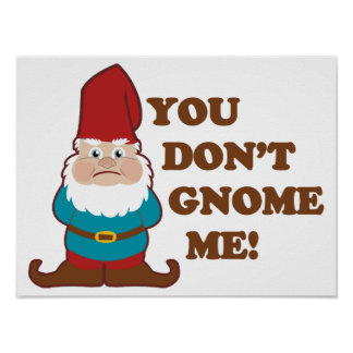 You Dont Gnome Me! Poster