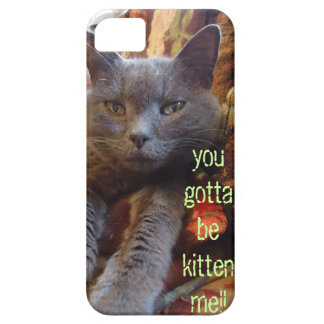 You gotta Be Kitten Me!!! Barely There iPhone 5 Case