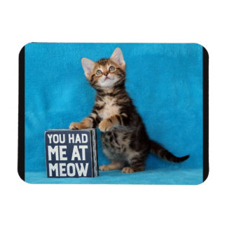 You Had Me at Meow Bengal Kitten Magnet