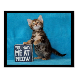 You Had Me at Meow Bengal Kitten Poster