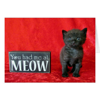 You Had Me At Meow - Pepper (aka Jelly Bean) Card