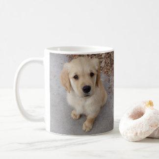 (You) Have a Donut, I Like Donuts Coffee Mug