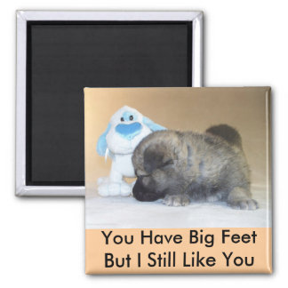 You Have Big Feet Square Magnet