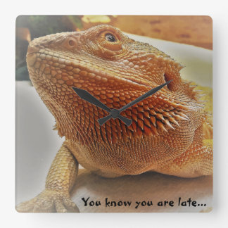 You know you are late Funny Orange Bearded Dragon Square Wall Clock