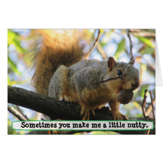 You make me Nutty, Squirrel Humor Card