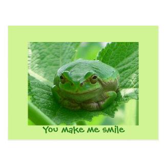 You make me smile - green frog postcard