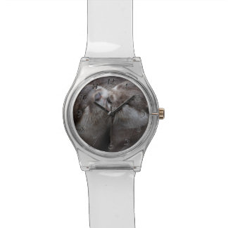 You Mean Otter World To Me Otters Love Kissing Watch