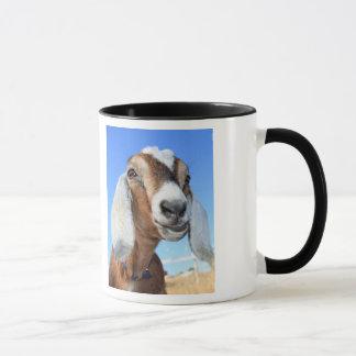 You Old Goat Club Mug
