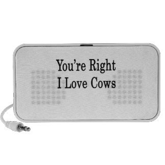 You re Right I Love Cows Mp3 Speakers