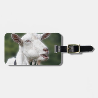 You Really Get/ Goat Me Luggage Tag