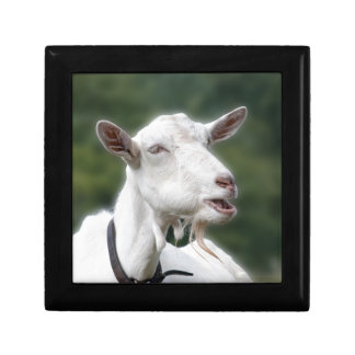You Really Get/ Goat Me Small Square Gift Box