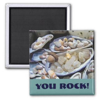 YOU ROCK magnets gifts Shells Agates Rocks