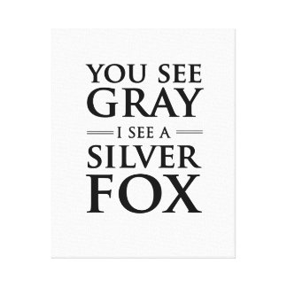 You See Gray, I See a Silver Fox Canvas Print
