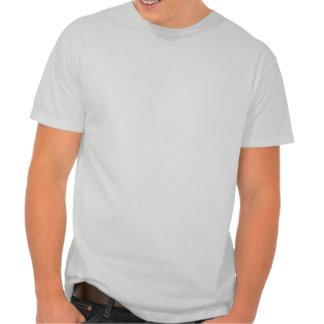 You See Grey I See a Silver Fox Tshirt