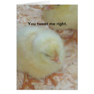 You tweet me right. card