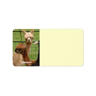 Young Alpacas Address Label