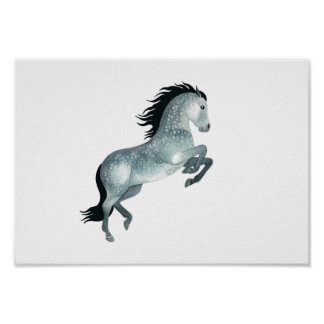 Young and wild, Gray horse in watercolour Poster