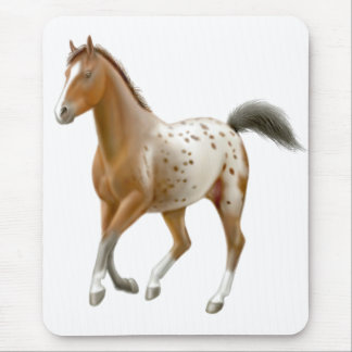 Young Appaloosa Horse Mousepad