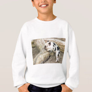 Young black and white piglet at tree trunk sweatshirt