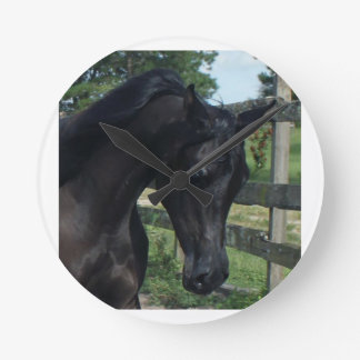 Young Black Arabian Stallion Clock