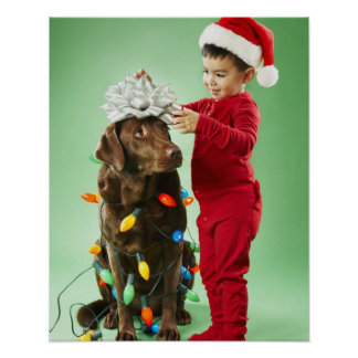 Young boy wrapping Christmas lights around a dog Poster