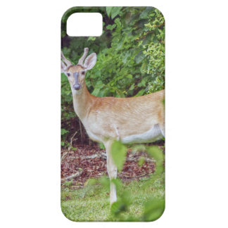 Young Buck in Velvet Case For The iPhone 5