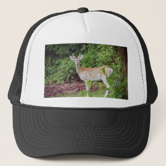 Young Buck in Velvet Trucker Hat