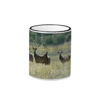 Young Bull Elk Mugs
