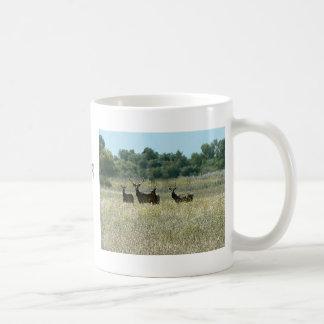Young Bull Elk Classic White Coffee Mug
