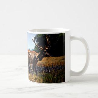 """Young Bulls"" - Elk Basic White Mug"