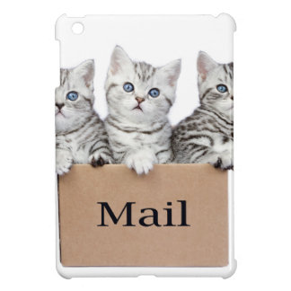Young cats in cardboard box with word Mail iPad Mini Cases