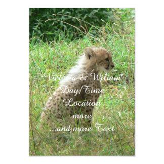 young cheetah 13 cm x 18 cm invitation card