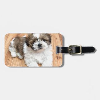 Young Chi Chu dog lying on parquet floor Luggage Tag