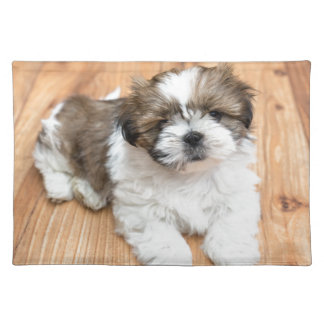 Young Chi Chu dog lying on parquet floor Placemat
