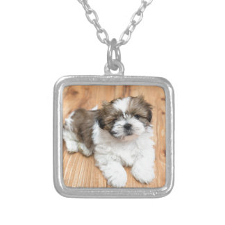 Young Chi Chu dog lying on parquet floor Silver Plated Necklace