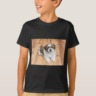 Young Chi Chu dog lying on parquet floor T-Shirt
