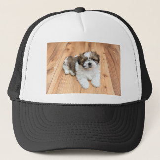 Young Chi Chu dog lying on parquet floor Trucker Hat