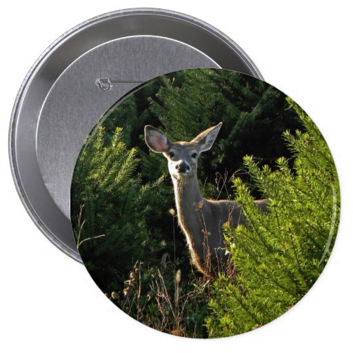 Young Deer in Pine Trees Button