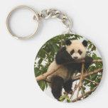 Young giant panda key chain