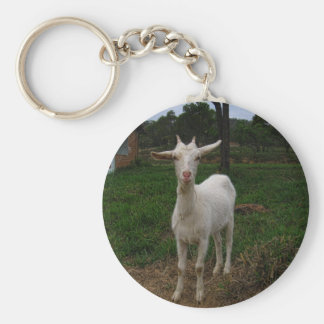 Young Goat Key Ring