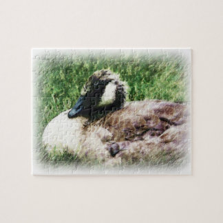 Young Goose - Sketched Drawing Jigsaw Puzzle