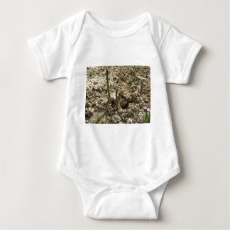 Young green asparagus sprouting from the ground baby bodysuit