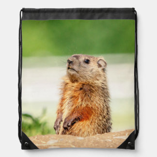 Young Groundhog Drawstring Bag